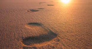footsteps-on-sand-3-672x372
