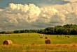 rural-4107054_960_720-672x372