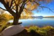 4186644-best-hd-scenery-672x372 (1)