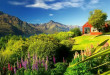mountains-queenstown-new-zealand-grass-hotel-slope-mountain-sky-wildflowers-summer-lovely-beautiful-river-lupine-field-cool-images-desktop-images-background-1364x768-672x372 (3)