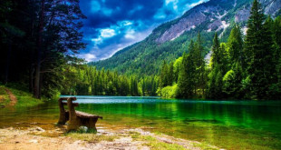 Wonderful-Mountain-landscape-with-green-pine-forest-green-turquoise-river-wallpaper-hd-672x372 (1)
