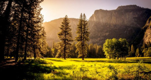 nature-sky-outdoors-landscape-trees-sunset-mountains-grass-forest-summer-wallpaper-16149-preview-38145ccb-672x372 (2)