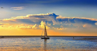 sailing-wallpaper-preview-672x372 (1)